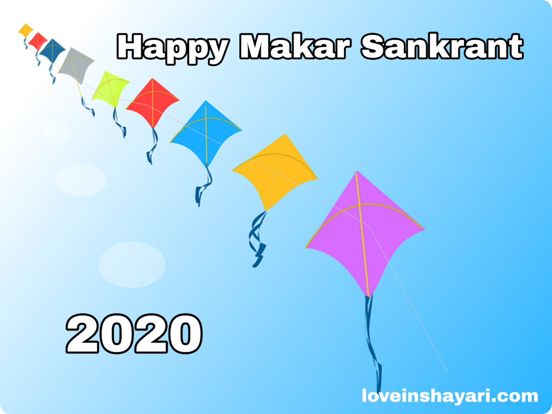Photo of मकर संक्रांति शायरी , quotes , sms , wishing shayari 2020