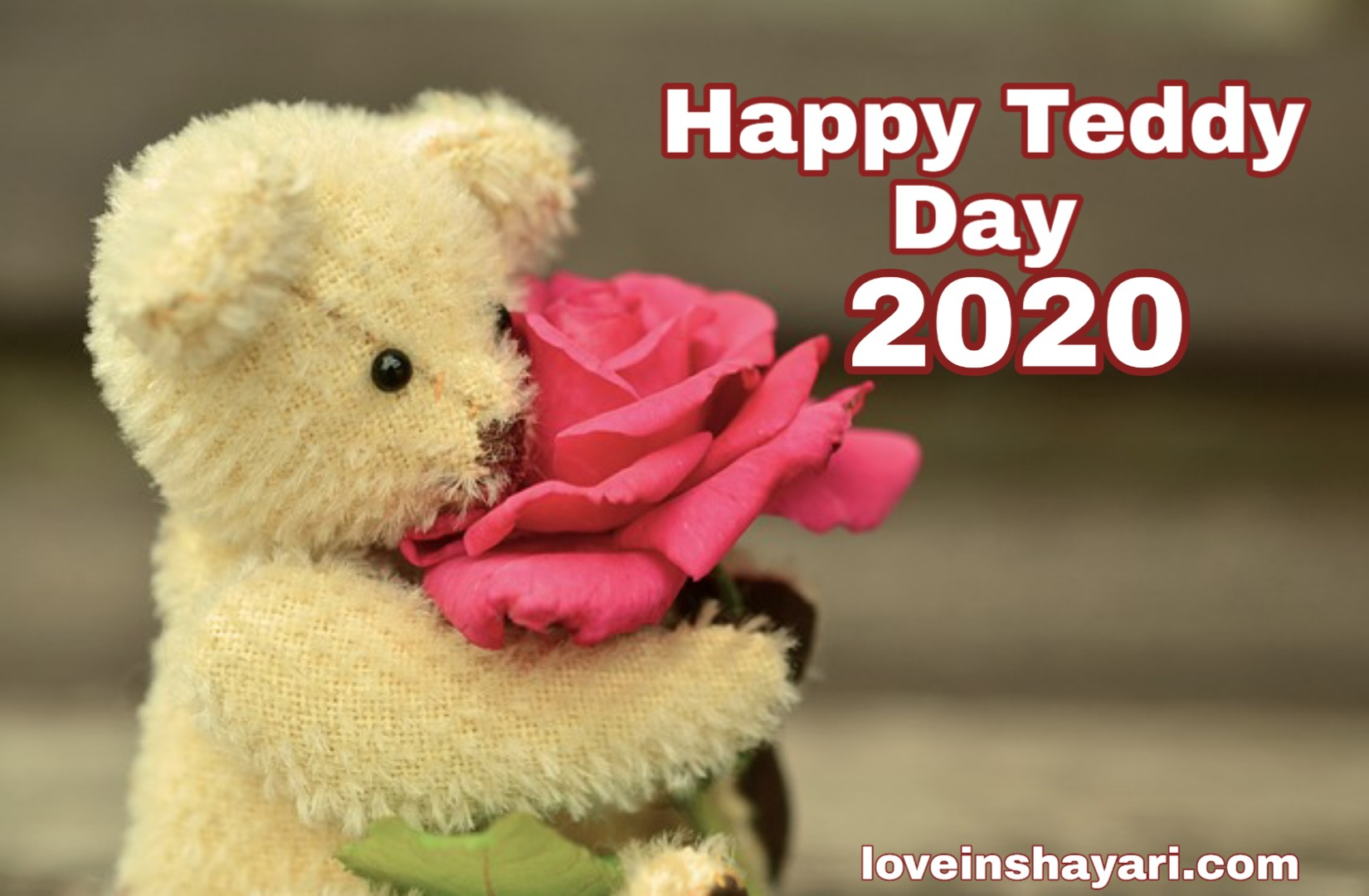 Photo of Happy Teddy Day 2020 shayari, wishes, images