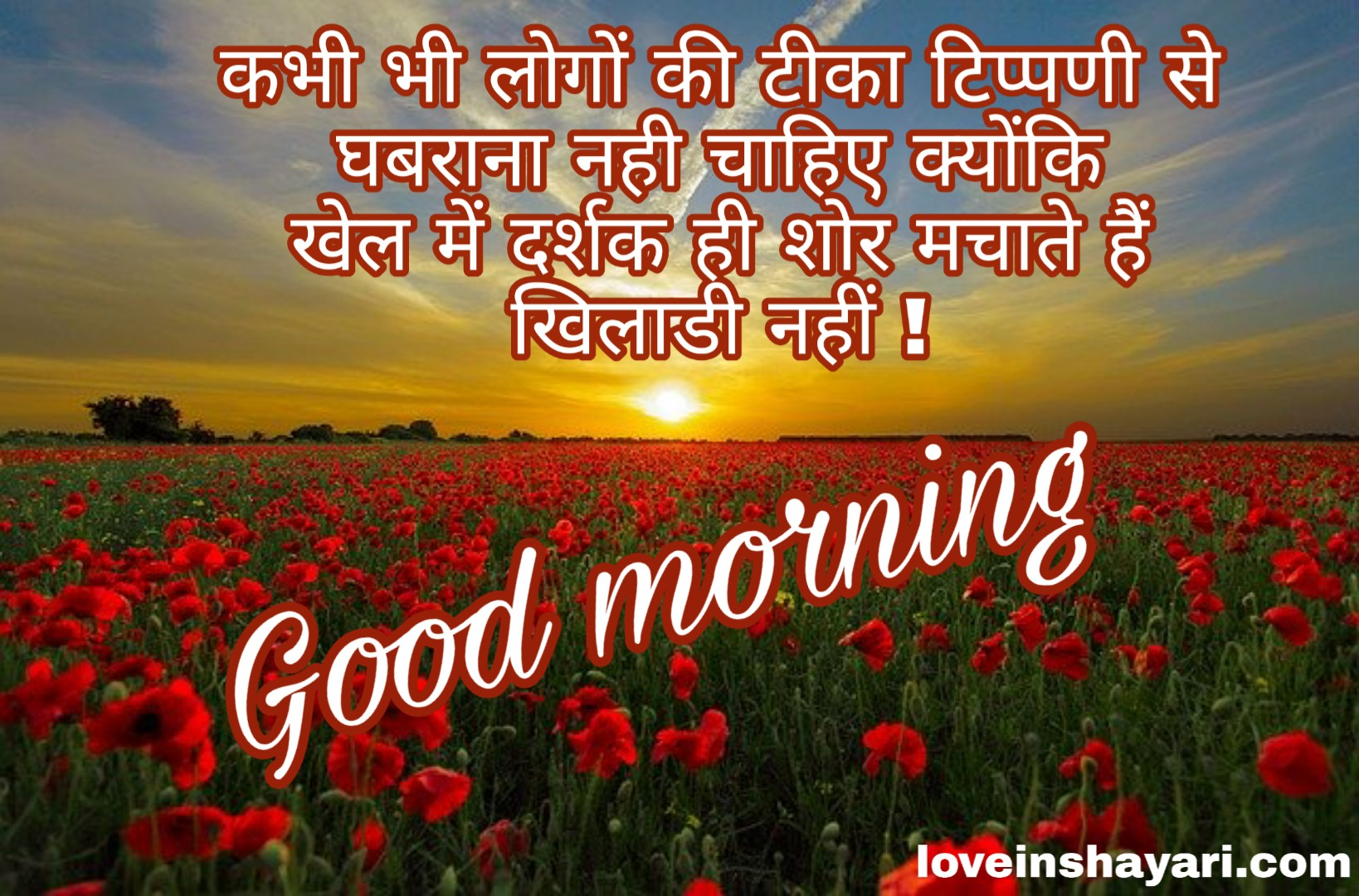 Photo of Good morning whatsapp status in hindi
