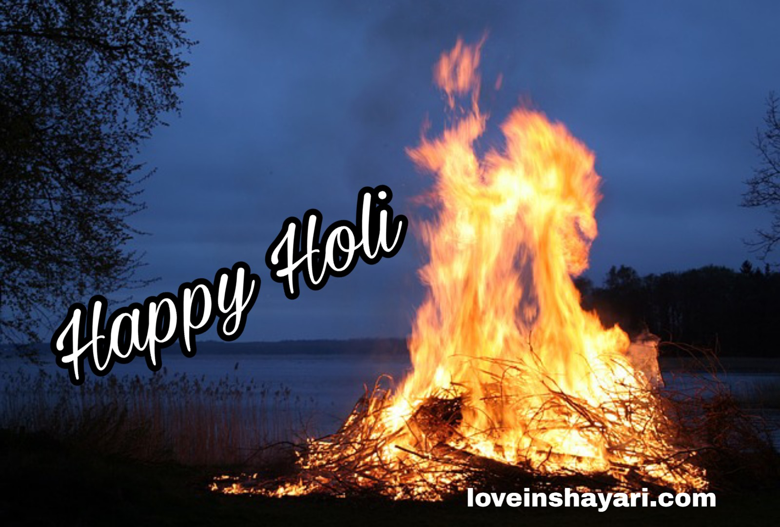 Photo of Holika dahan 2020 images, wishes in hindi