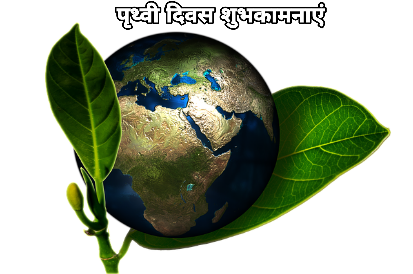 Photo of Earth day wishes shayari quotes messages 2020