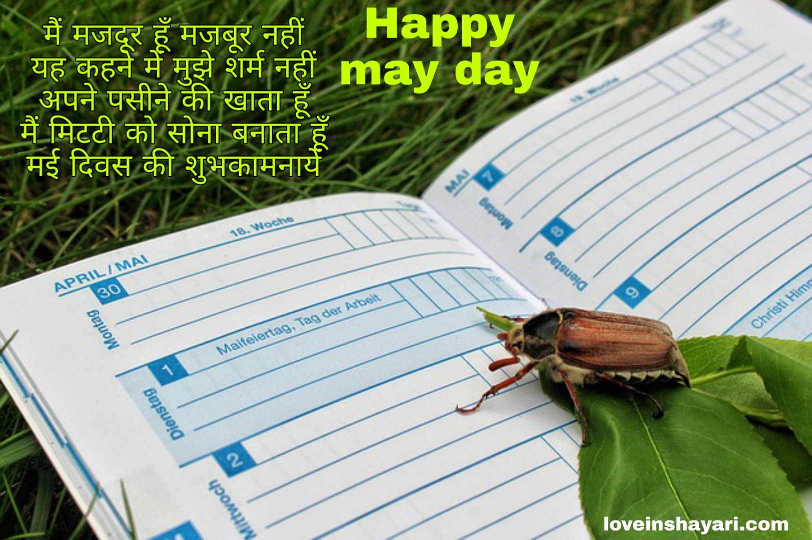 May day wishes shayari quotes messages