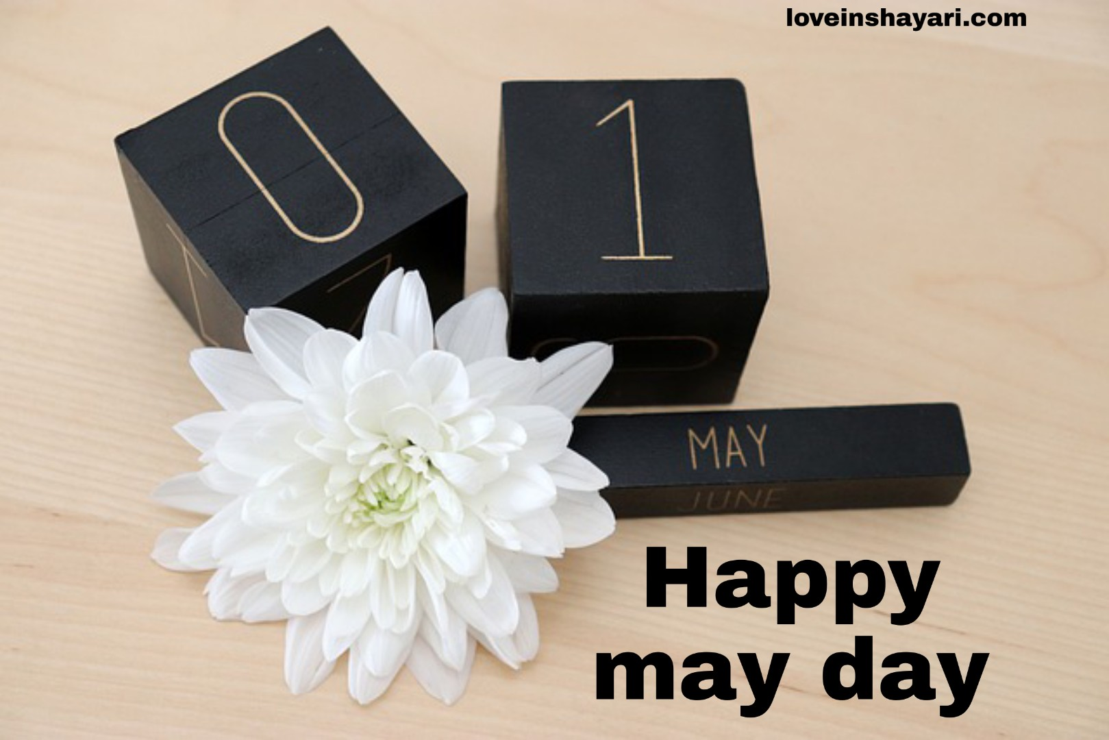 May day status whatsapp status
