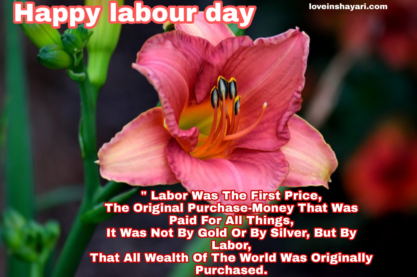 Photo of Labour day images 2020 hd