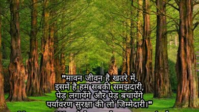 Photo of World environment day shayari wishes quotes sms 2020