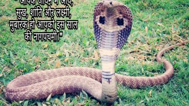 Photo of Nag Panchami status whatsapp status 2020