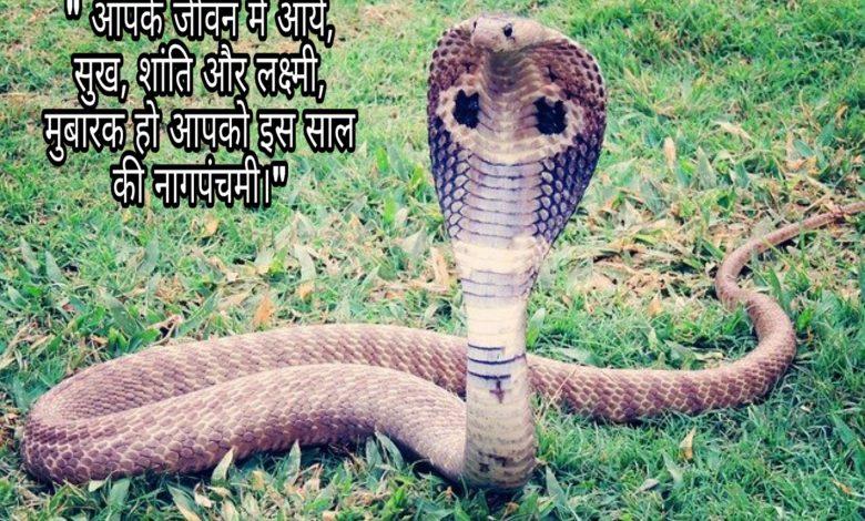 Nag Panchami status whatsapp status