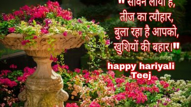 Photo of Hariyali Teej wishes shayari quotes messages 2020