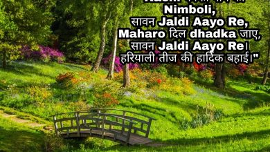 Photo of Hartalika Teej shayari status images quotes sms 2020
