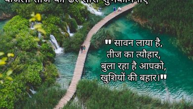 Photo of Kajari Teej shayari wishes quotes messages 2020