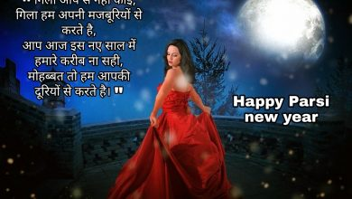 Photo of Parsi new year shayari wishes quotes messages 2020