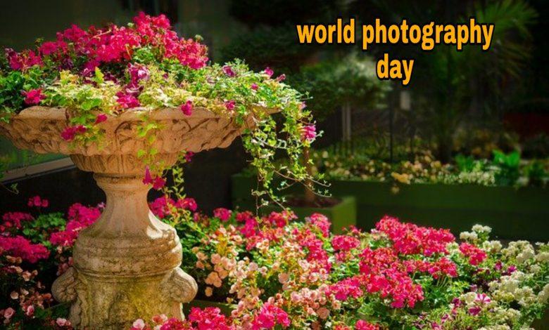World photography day status whatsapp status